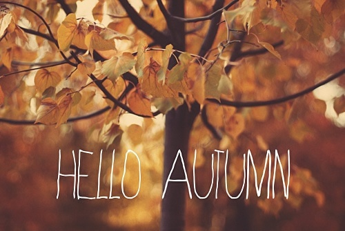 hello-autumn_008